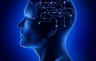 آدرس پزشکان متخصص مغز و اعصاب قم