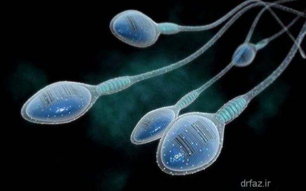 تقویت اسپرم درمان نازایی مردان